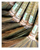 Burmese Brooms Photographic Print by ziva santop