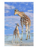Watching Over Me Photographic Print by Lisa Putman