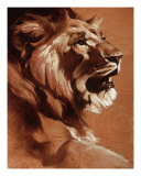Lion, King Giclee Print by Heather Theurer