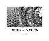 Determinacja Reprodukcja zdjęcia autor Harry Starr