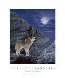 Wonders Of Creation - Wolf Series II Photographie par Chris Dobrowolski
