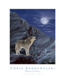 Wonders Of Creation - Wolf Series II Photographic Print by Chris Dobrowolski