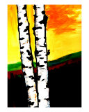 Birch Trees IV Giclee Print by Rebecca Felland-syring