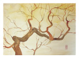 Tree Giclee Print by Alessandro Andreuccetti