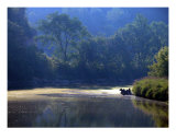 A Summer Day Photographic Print by Beverly Turner