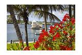 Boathouse View, Hamilton, Bermuda Photographic Print by George Oze