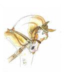 Skewbald Cob Giclee Print by Helen Yeo