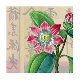 Zen Passion Flower I Giclee Print by Ricki Mountain