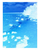 Blue Snow Photographic Print by Florene Welebny