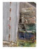 Lobster Traps Photographic Print by Lauren Gruttner