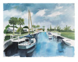 Florida Canal Giclee Print by Ed Barbini
