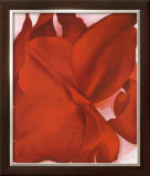 Red Cannas Prints by Georgia O'Keeffe
