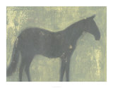 Grey Horse Premium Giclee Print by Norman Wyatt Jr.