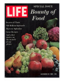 Special Issue, Bounty of Food, November 23, 1962 Photographic Print by Dmitri Kessel