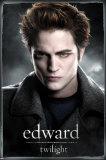 Twilight (film) Affiches