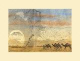 Sfax Tunisie Prints by Philippe Letestu