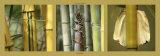 Bambous Posters par Laurent Pinsard