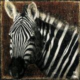 Zebra Portrait Posters by Fabienne Arietti