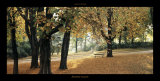 Automne au Parc Prints by Laurent Pinsard
