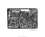 Farmer's Market VI Premium Giclee Print by Laura Denardo