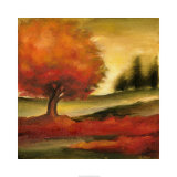 Harvest Maple II Premium Giclee Print by Ethan Harper