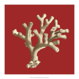Coral on Red II Giclee Print