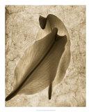 Comfort Giclee Print by Leonard Morris