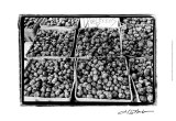 Farmer's Market VI Prints by Laura Denardo