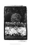 Garden Hideaway II Prints by Laura Denardo