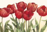 Ruby Tulips Poster by Carol Rowan