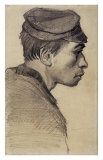 Young Peasant Posters by Vincent van Gogh