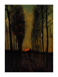 Lane of Poplars at Sunset Reproduction proc&#233;d&#233; gicl&#233;e par Vincent van Gogh