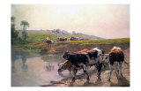 Pasture Cattle at Watering Hole Prints by Vaclav Brozik