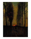Lane of Poplars at Sunset Reproduction procédé giclée par Vincent van Gogh