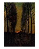 Lane of Poplars at Sunset ジクレープリント : フィンセント・ファン・ゴッホ
