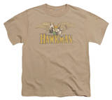 Youth: DC Comics - Hawkman T-shirts
