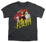 Youth: DC Comics - The Flash - Run Flash Run T-shirts