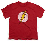 Youth: DC Comics - The Flash Logo - Distressed T-Shirt
