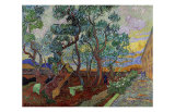 The Garden of Saint Paul's Hospital II Giclee Print by Vincent van Gogh