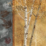Birch Tree in Autumn I Art by Conrad Knutsen