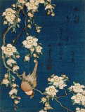 Fugl og kirsebærtre, ca. 1834|Goldfinch and Cherry Tree, c.1834 Posters av Katsushika Hokusai