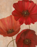 Poppy Trio II Print by Vivian Flasch