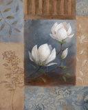 Magnolia Spring II Poster von  Nan