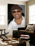 L.L. Cool J. Wall Mural