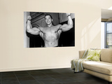 Arnold Schwarzenegger Wall Mural