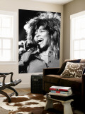 Tina Turner Wall Mural