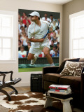 Andy Roddick Wall Mural