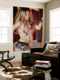 Shakira Wall Mural