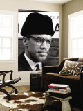 Malcolm X Wall Mural