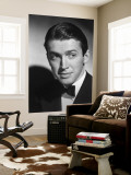 James Stewart Wall Mural
